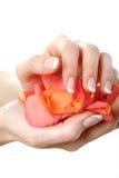 Z pięknym francuskim manicure'em piękna ręka Fotografia Royalty Free