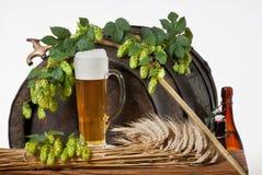 Z piwem wciąż życie Fotografia Royalty Free