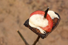 Z pomidorem piec na grillu chleb Fotografia Stock