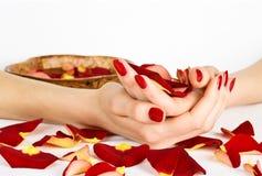 Z różanymi płatkami manicure'u zdrój Zdjęcia Royalty Free