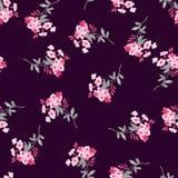 Z różowymi kwiatami bezszwowy kwiecisty wzór Zdjęcie Royalty Free
