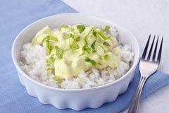 Z ryż kurczaka curry Zdjęcie Stock