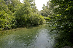 Z rzeką zielona sceneria Zdjęcie Royalty Free