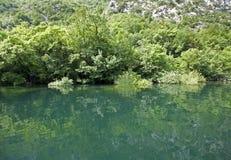 Z rzeką zielona sceneria Obraz Royalty Free