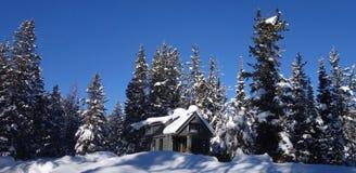 Z siatka malutkiego domu w górach obraz royalty free