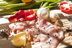 Z składnikami kurczaków świezi kawałki Zdjęcie Stock