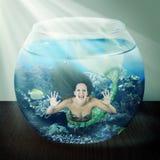 Zła syrenka w fishbowl z ryba na stole Fotografia Stock