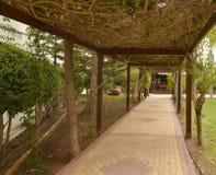 Z tarasu ogródem Zdjęcie Royalty Free