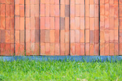 Z trawy podłoga czerwony ściana z cegieł Zdjęcia Royalty Free