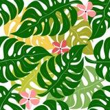 Z tropikalnymi liść bezszwowy wzór Obrazy Stock