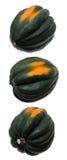 Z trzy różnymi widok acorn kabaczek Zdjęcie Stock