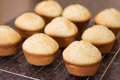 z wanilii chłodniczy świezi muffins Obrazy Royalty Free