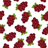 Z winogronami bezszwowy wzór ilustracja wektor