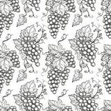 Z winogronami bezszwowy wzór Obrazy Royalty Free