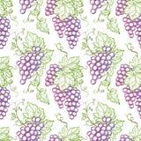 Z winogronami bezszwowy wzór ilustracji