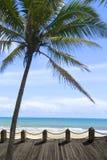 Z wybrzeża naturalna sceneria Obrazy Royalty Free