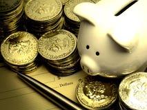 Z Złotem Prosiątko bogaty Bank Ukuwać nazwę Pieniądze Zdjęcia Royalty Free