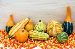 Z zębu kukurydzanym cukierkiem kolorowe gurdy Fotografia Royalty Free