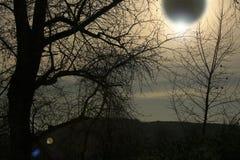 zaćmienie słońca obraz royalty free