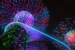 Zaświecać Duzi Super drzewa w Singapur jest Zadziwiający i przychodzi al fotografia royalty free