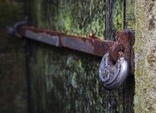 za drzwi zielenią Fotografia Stock
