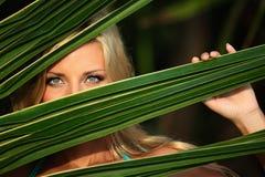 za liść palmy kobietą obraz stock