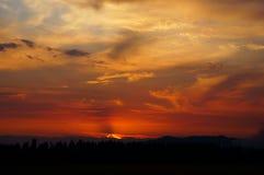 za sosnowymi stałego sunset drzewa dwa lata Obrazy Royalty Free