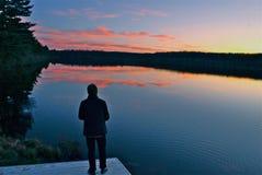 za sosnowymi stałego sunset drzewa dwa lata Fotografia Stock