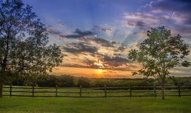 za sosnowymi stałego sunset drzewa dwa lata Obrazy Stock