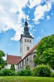 za Tallinn kościelnymi starymi drzewami Fotografia Royalty Free