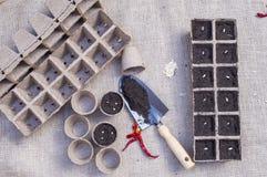 Zaad zaaien, die zaad van tuininstallaties planten stock foto's