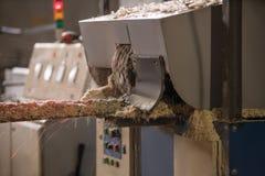 Zaagmolen, de houten industrie Verwerking van houten logboeken stock afbeeldingen