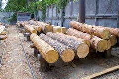 zaagmolen De stapel van het pakhuishout Logboeken van pijnboom voor het zagen van het timmerhout van de stralenraad royalty-vrije stock afbeelding