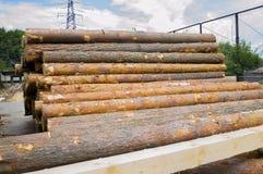 zaagmolen De stapel van het pakhuishout Logboeken van pijnboom voor het zagen van het timmerhout van de stralenraad stock foto