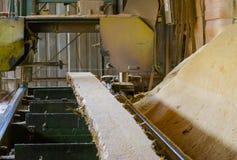 zaagmolen Het proces om machinaal te bewerken opent de zagen van de zaagmolenmachine de het programma boomboomstam royalty-vrije stock foto