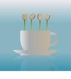 Zaailingen op de koffiekop Stock Foto