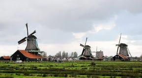 zaan nederländska gammala schan windmills Royaltyfria Foton