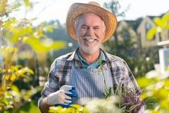 Zaangażowany niepłonny przechodzić na emeryturę mężczyzna cieszy się dzień w ogródzie obrazy stock