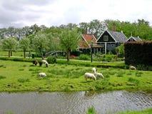 Zaanse Schans Dorf, die Niederlande Lizenzfreies Stockfoto