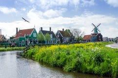 Zaanse Schans, Países Baixos - 5 de maio de 2015: Moinhos de vento da visita do turista e casas rurais em Zaanse Schans Foto de Stock Royalty Free