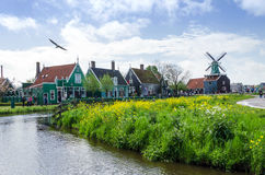 Zaanse Schans, Paesi Bassi - 5 maggio 2015: Mulini a vento turistici di visita e case rurali in Zaanse Schans Fotografia Stock Libera da Diritti