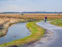 Zaanse Schans, platteland in de Nederlandse stad van Zaandam stock afbeelding