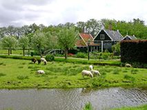 Zaanse Schans village, Netherlands Royalty Free Stock Photo