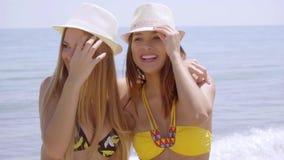 Zabaw samorzutne młode kobiety cieszy się uściśnięcie zbiory wideo