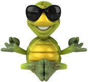 Zabawa żółw Obraz Stock