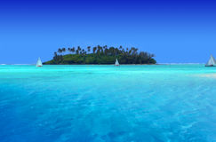 zabawa tropikalna zdjęcia royalty free