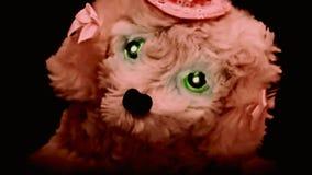 Zabawka od piekło psa łapie ciebie szybkiego zbiory wideo
