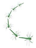 Zabawkarscy Dragonflies fotografia stock