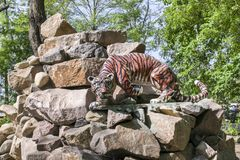 Zabawkarscy lwów stojaki na skałach obrazy stock