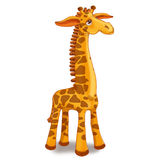 Zabawkarska żyrafa na białym tle Zdjęcia Royalty Free